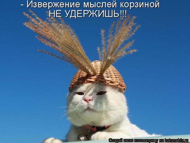 Ни дня без улыбки. И только Яндекс поймет меня…