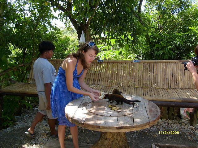 Из зимы в лето. Филиппины 2011 - Страница 6 S6300927