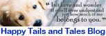 Happy Tails & Tales Blog