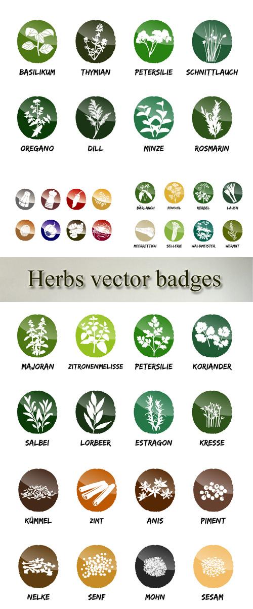 Stock: Herbs vector badges