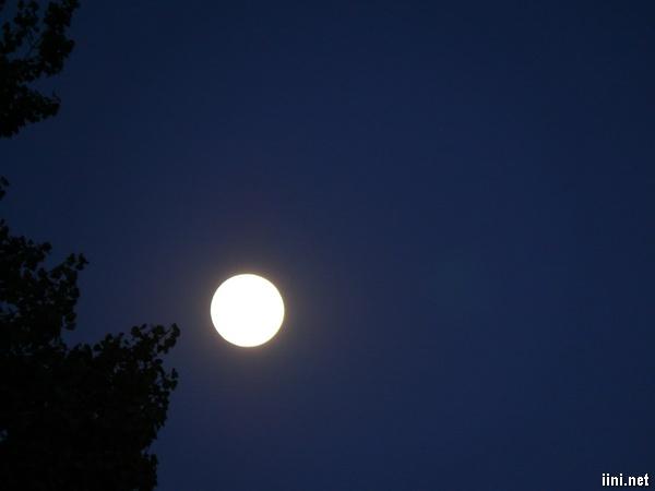 ảnh trăng quê