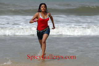 Priyamani new hot photos