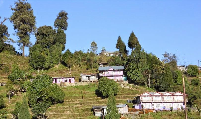 Rishop Village Darjeeling