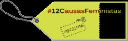 #12CausasFeministas