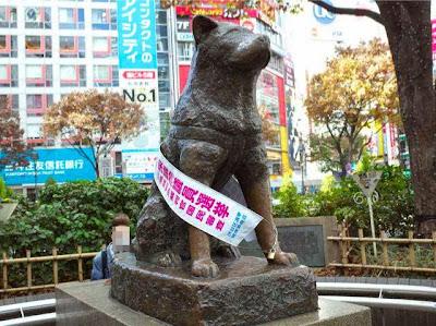選挙期間の案内する、渋谷駅前のハチ公の銅像