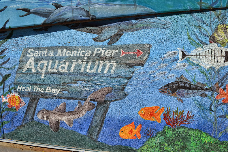 Santa Monica Beach Pier Aquarium Jennifer Richard Sed695b4
