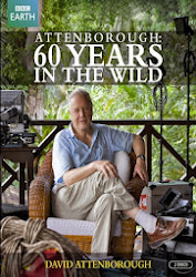 Attenborough: 60 Years In The Wild - 60 năm trong hoang dã