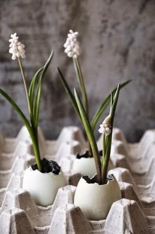 Flowers in Easter Eggs