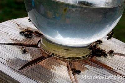 Подсоленная вода для пчёл. Поилка для пчёл