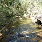 Jamison Creek (317672)