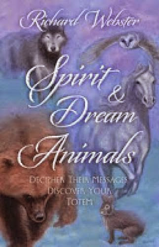 Bluebirds Dreams And Spirit Animals