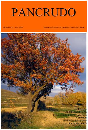 Portada Revista Pancrudo nº11 (2007). Fuente de color. 1º Premio Concurso Fotográfico (Alberto Novellón Pérez)