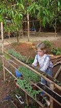 Огород в детском саду в Гоа