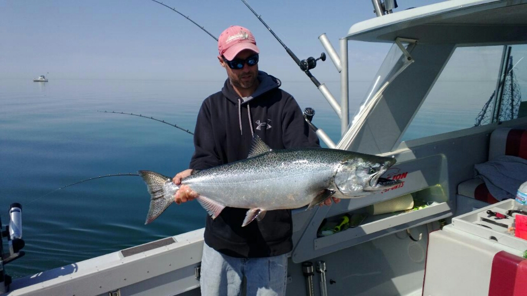 Great Lakes King Salmon