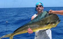 mahi-mahi or el dorado fish- good lunch!