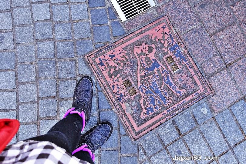 ห้าแยกชิบูย่า-shibuya-intersection-tokyo-สิ่งที่น่าสนใจในโตเกียว-เที่ยวญี่ปุ่น-เที่ยวญี่ปุ่นด้วยตัวเอง-เที่ยวโตเกียว-แนะนำที่เที่ยว โตเกียว