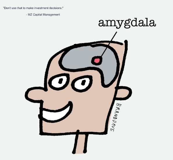 Investment and Amygdala