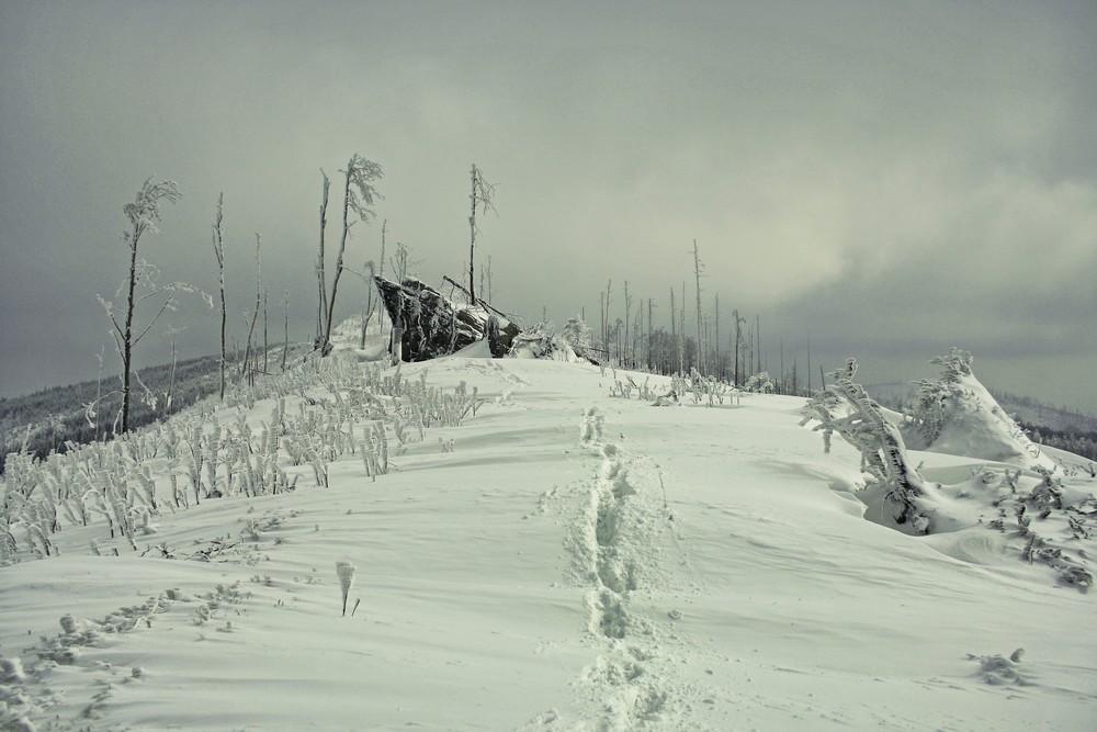 Szlak na Magurkę Wiślańską