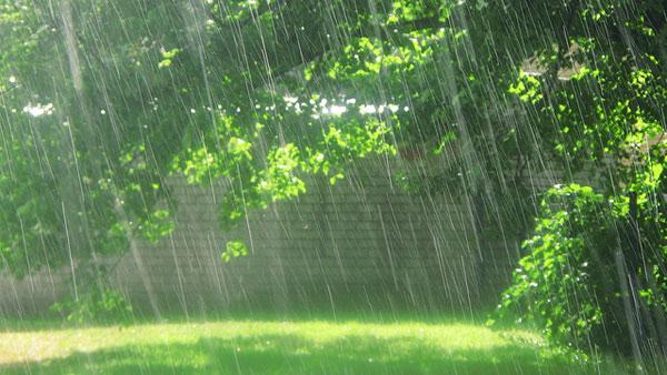 Thơ mưa mùa Hạ