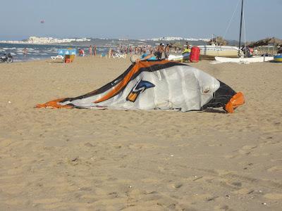 Tunisia kite du 1 au 23 août  IMG_1902
