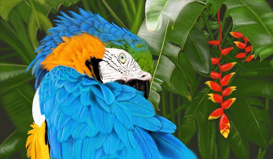 Monica's Macaw crated in ArtRage4