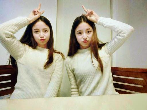 「最美雙胞胎」 學霸校花姊妹「合照像照鏡子」