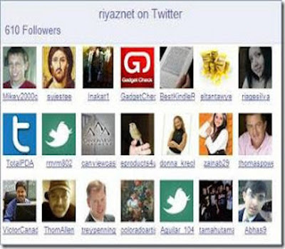 Twitter Followers Widget For Blogger