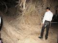 סיור לילי במדבר