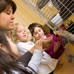 Some of our classrooms have pets, either as permanent community members or temporary visitors.