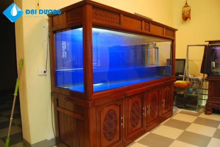 Tủ hồ cá rồng đẹp tháng 7/2013 - 2