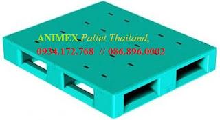 Pallet nhựa nhập khẩu Thailand