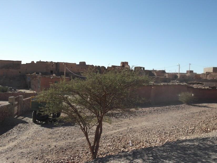 marrocos - Marrocos e Mauritãnia a Queimar Pneu e Gasolina - Página 10 DSCF1242