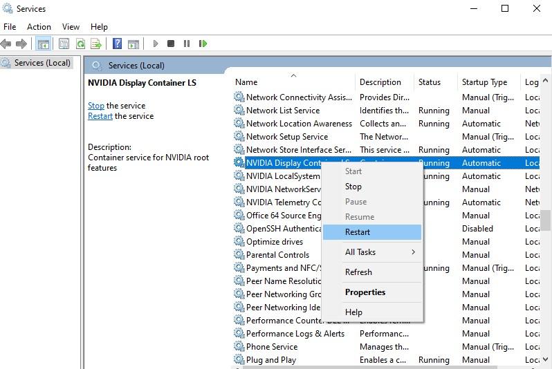 restart NVIDIA Display Container LS