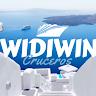 Widiwin A.C
