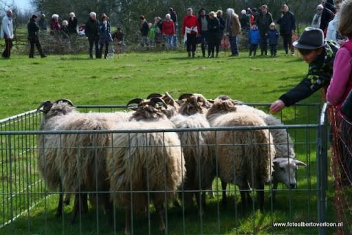nk Maasheggenvlechten Oeffelt 11-03-2012 (15).JPG