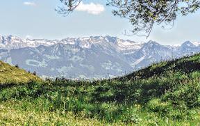 Steineberg - Wandern von Gunzesried, Blaichach, Allgäu im Naturpark Nagelfluhkette