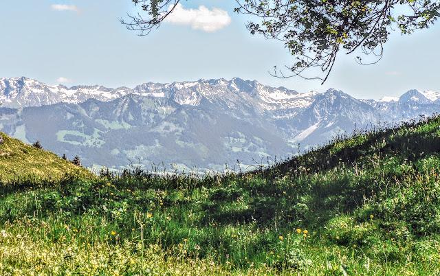 Blick auf Großer Daumen Nebelhorn Rubihorn nahe Krumbachalpe
