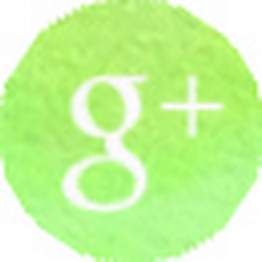 MucVeg auf Google+ folgen