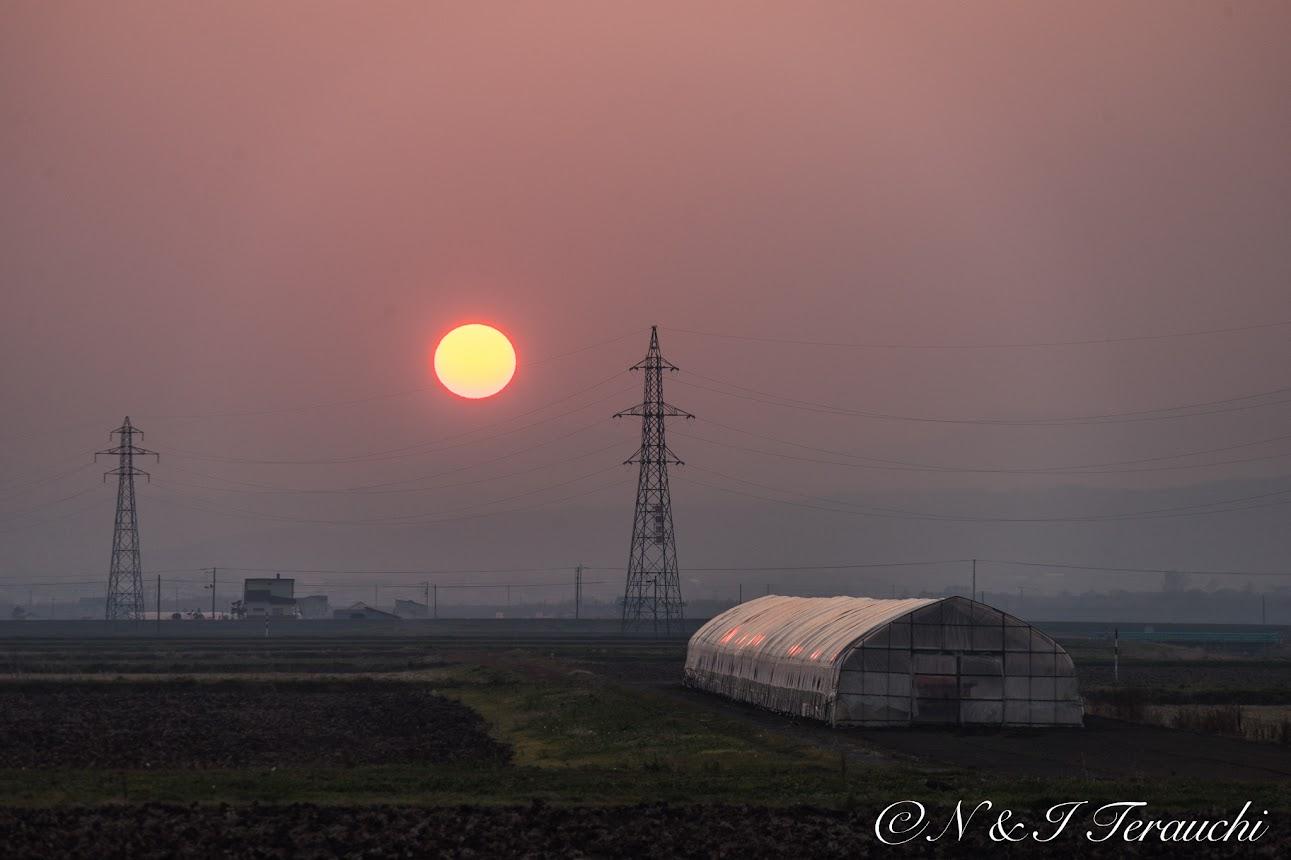 電柱が小さく見えるほどのでっかい夕陽