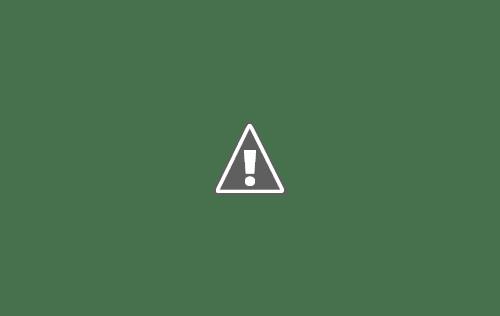560114 563956416948009 50654635 n+copy - Кошки ))