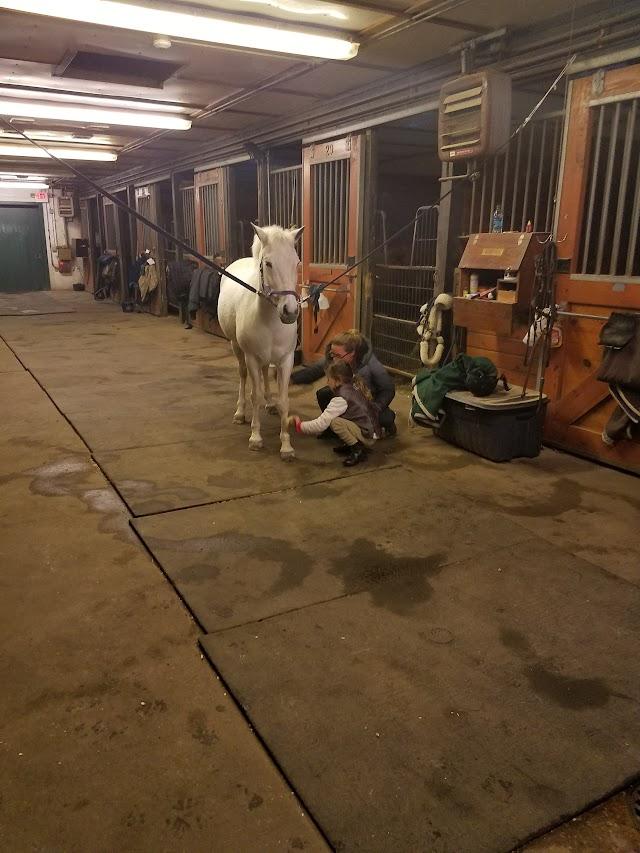 Gray Horse Farm Hamptons