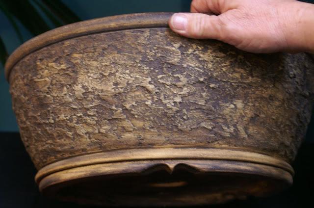 Prunus Mahaleb Noelander%25202013%2520001