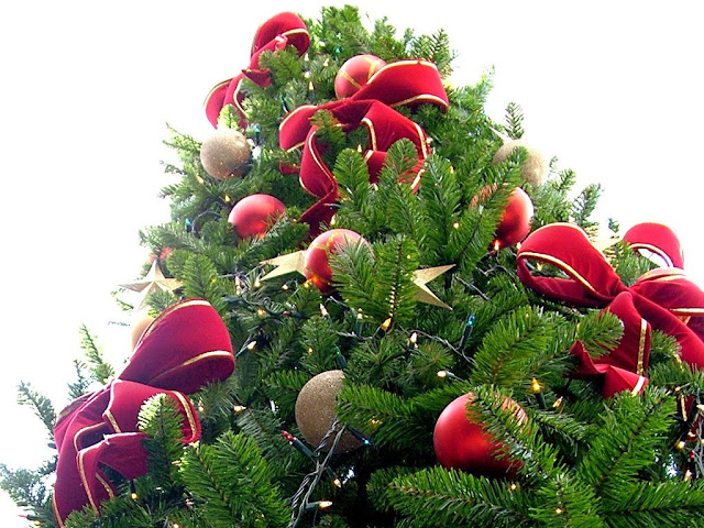 Christmas tree by Lotus Head from Johannesburg, Gauteng, South Africa, via Wikimedia Commons