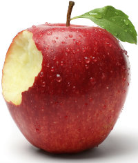 bite-out-of-big-apple_w200.jpg