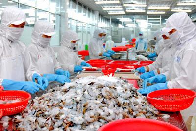 Đơn hàng chế biến thủy sản cần 09 nữ thực tập sinh làm việc tại Toyama Nhật Bản tháng 05/2016
