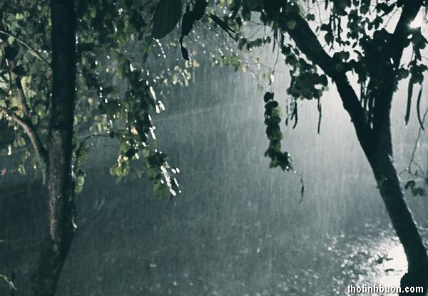Thơ đêm mưa nhớ người yêu, thơ tình đêm mưa lòng chợt nhớ ai