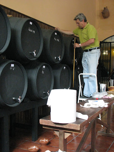 Wine Maker at Bodegas Quitapenas, Torremolinos, Costa del Sol
