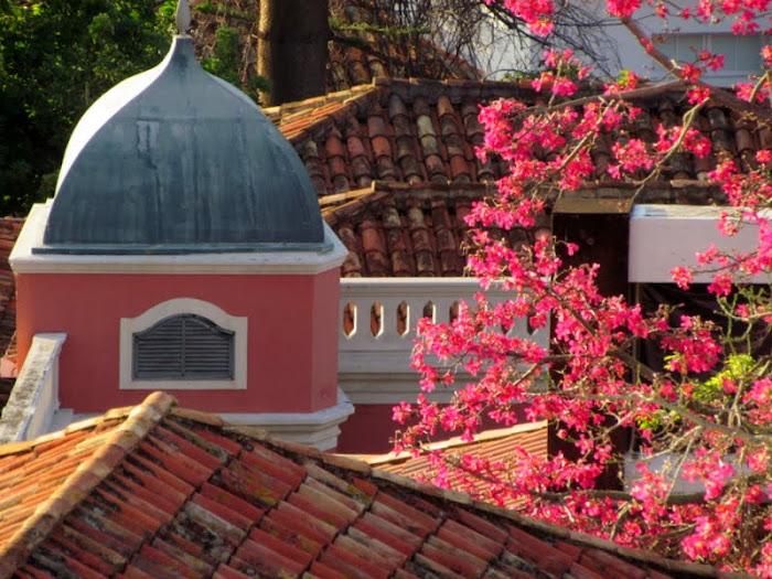 pink color in Casa Museu Frederico de Freitas