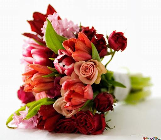 Bó hoa hồng và hoa tulip cho tình yêu cháy bỏng