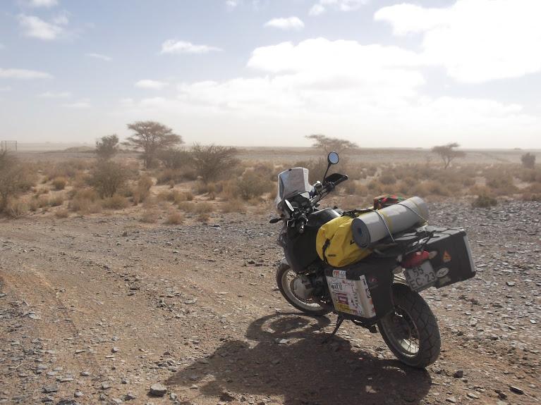 marrocos - Marrocos e Mauritãnia a Queimar Pneu e Gasolina - Página 10 DSCF1107
